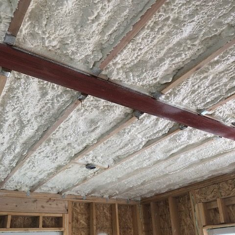 Project Profile Duplex Insulation In Hilo Denver Co